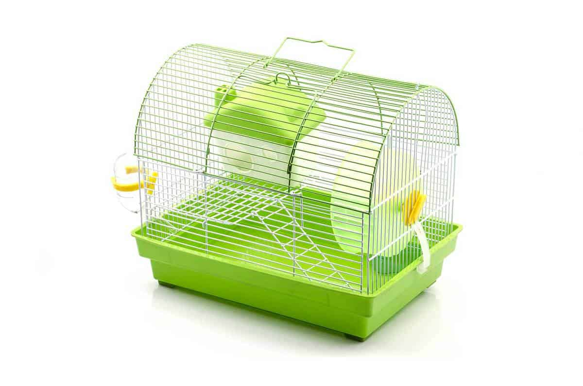 Empty small green hamster cage