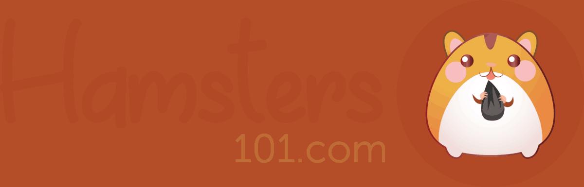 Hamsters 101