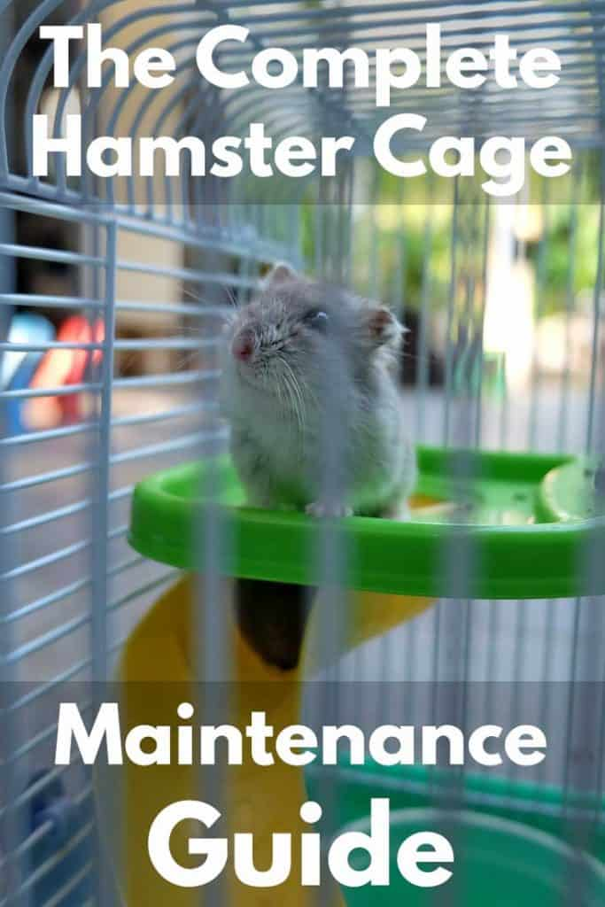 The Complete Hamster Cage Maintenance Guide