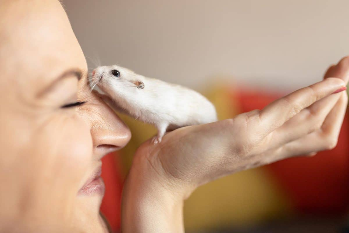 Young woman smiling while hamster touches her face