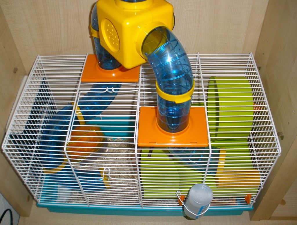 A Hamster Cage with Tunnels