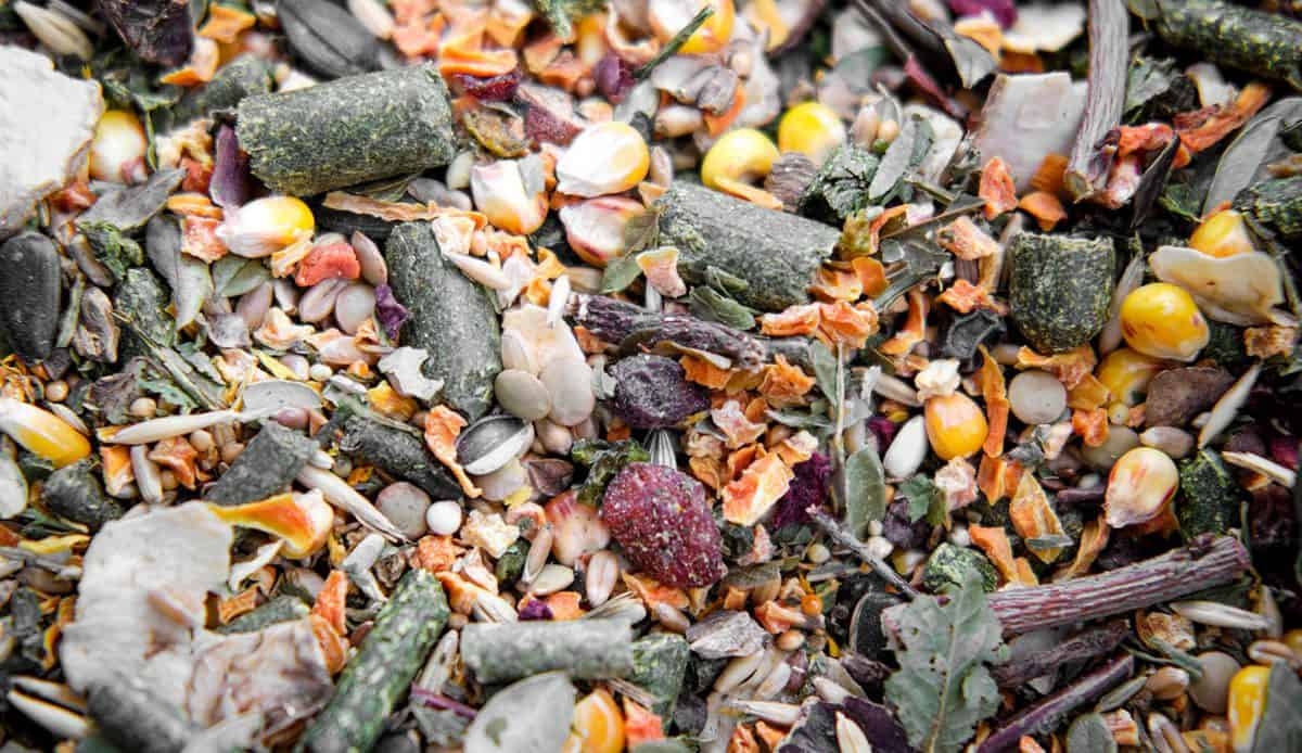 A variety of pellets and seed mixes for hamster