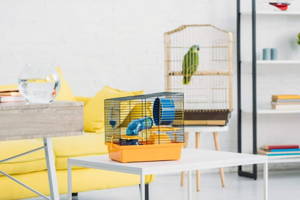 A yellow colored hamster cage inside a bright living room