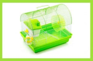 The 10 Best Hamster Travel Cages