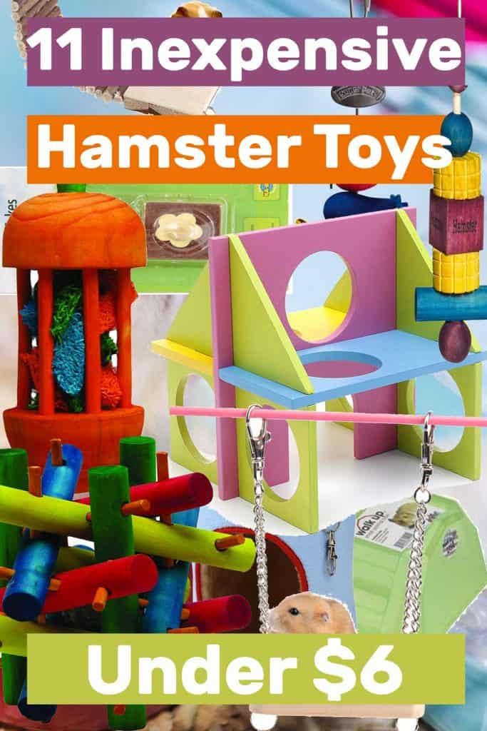 11 Inexpensive Hamster Toys Under $6