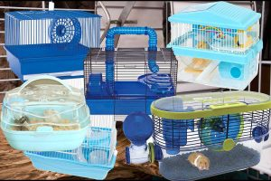 6 Gorgeous Blue Hamster Cages That Will Brighten Up Your Room