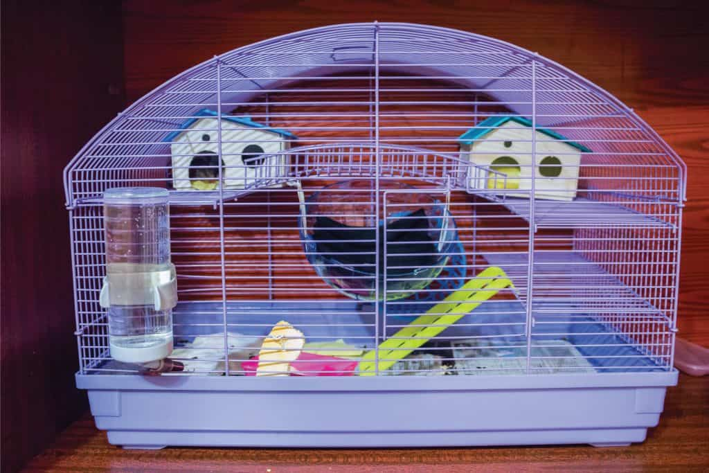 Cage for small pets with two toy houses and a drinking bottle inside