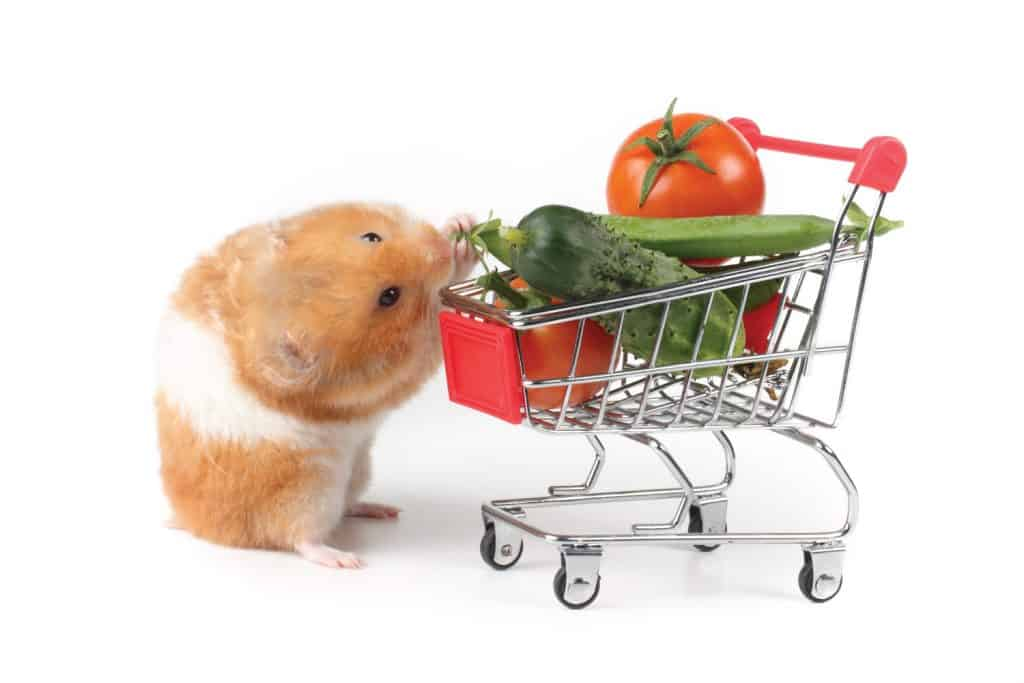 Syrian hamster and a shopping trolley with vegetables