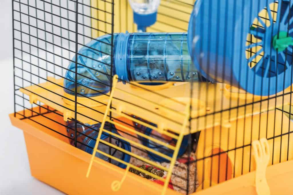 Orange pet cage with hamster inside transparent plastic tunnel